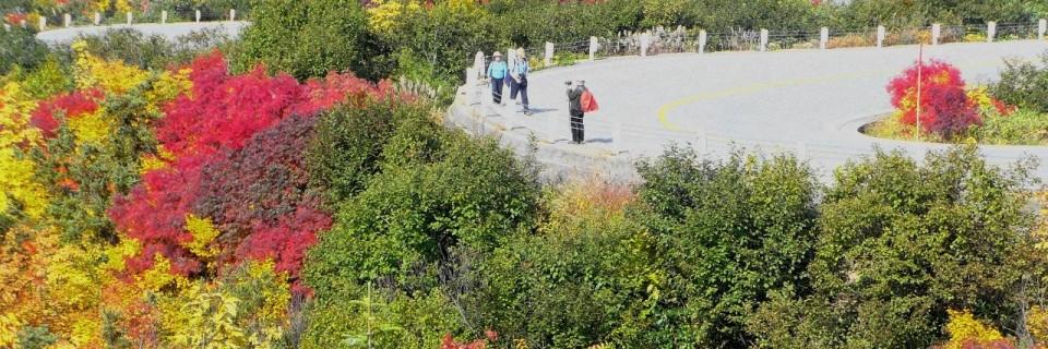 立山の紅葉 ~ 贅沢すぎる散歩道