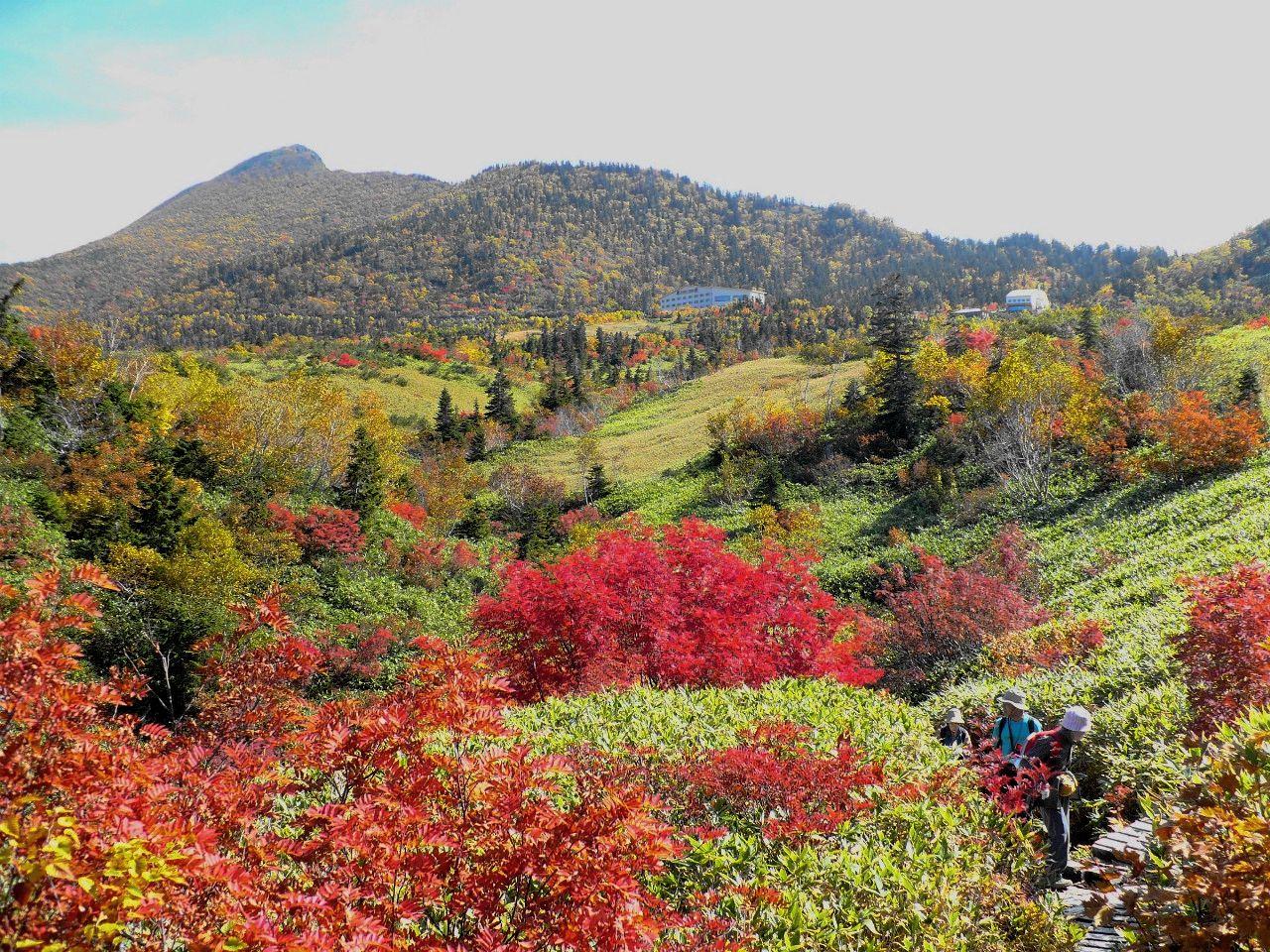 立山の紅葉はいつ頃行けばいい?