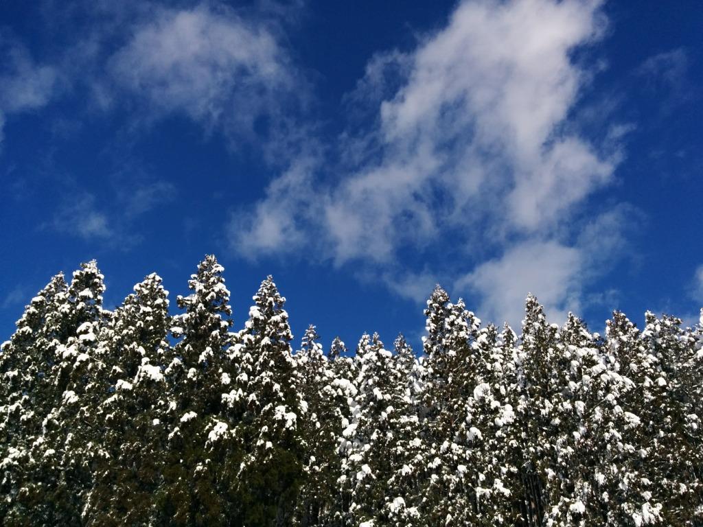 暮れゆく年と降り積もる雪