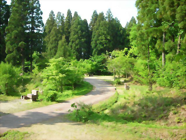 【編集長麦ちゃん】 立山グリーンパーク吉峰③オートキャンプ