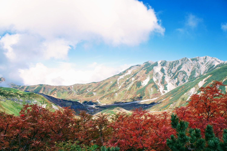 2018立山の紅葉を見に行ってきました!